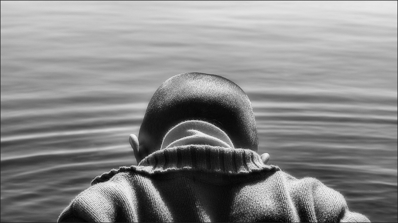 Discovering the water / descobrint l'aigua / descubriendo el agua