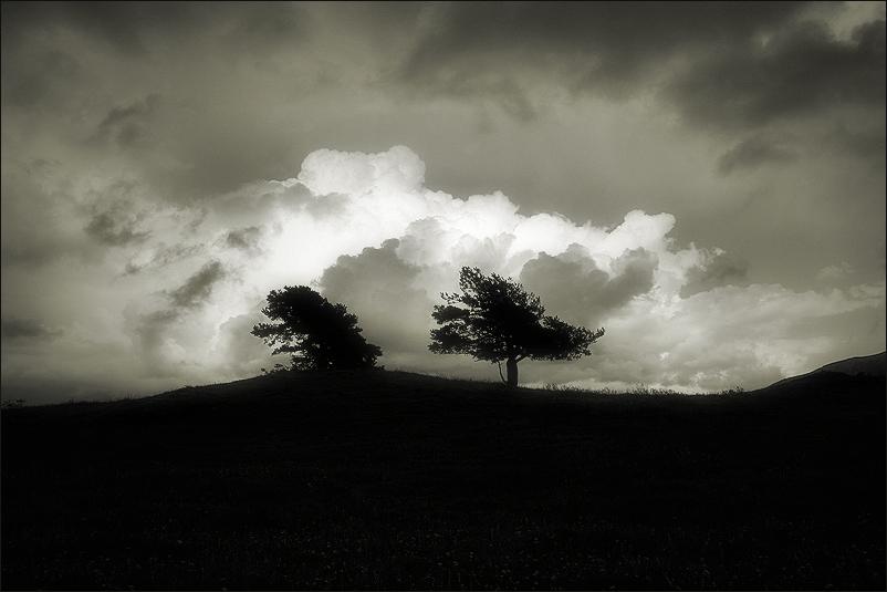 solitude in pair