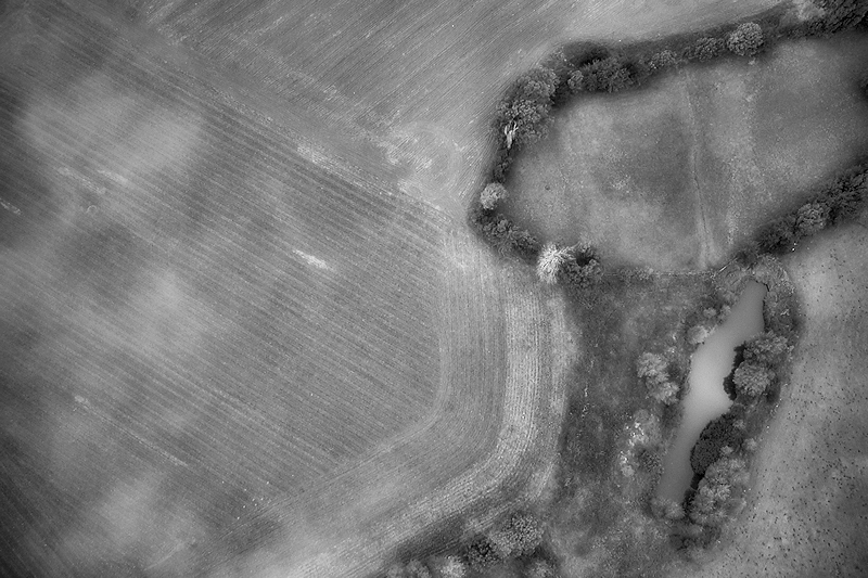 paisatge de la cerdanya només accesibles als ocells i algun que altre volat mes, o be, una casa amb jardí i piscina, però sense casa