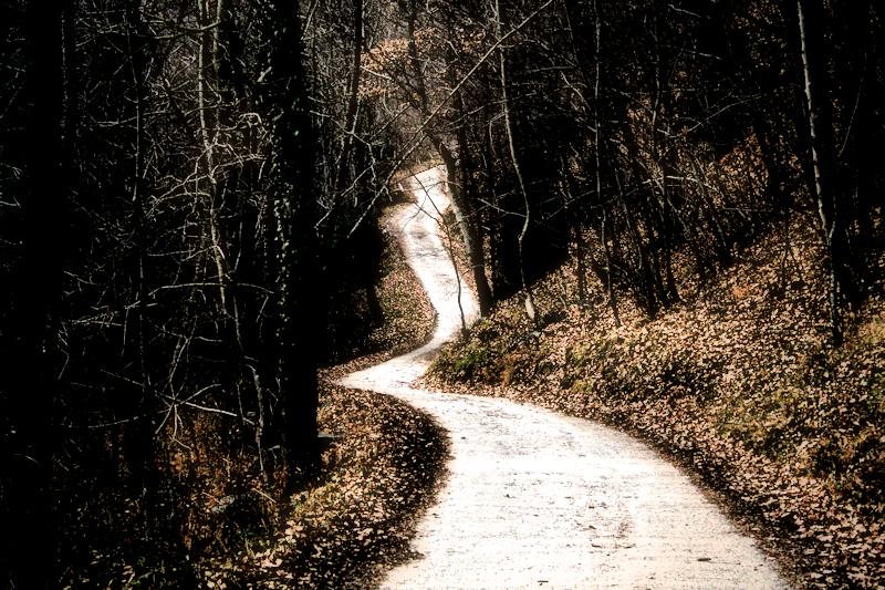 Camí de tornada
