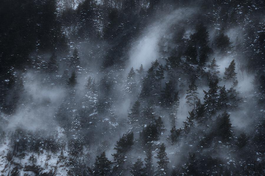 The blizzard / El torb
