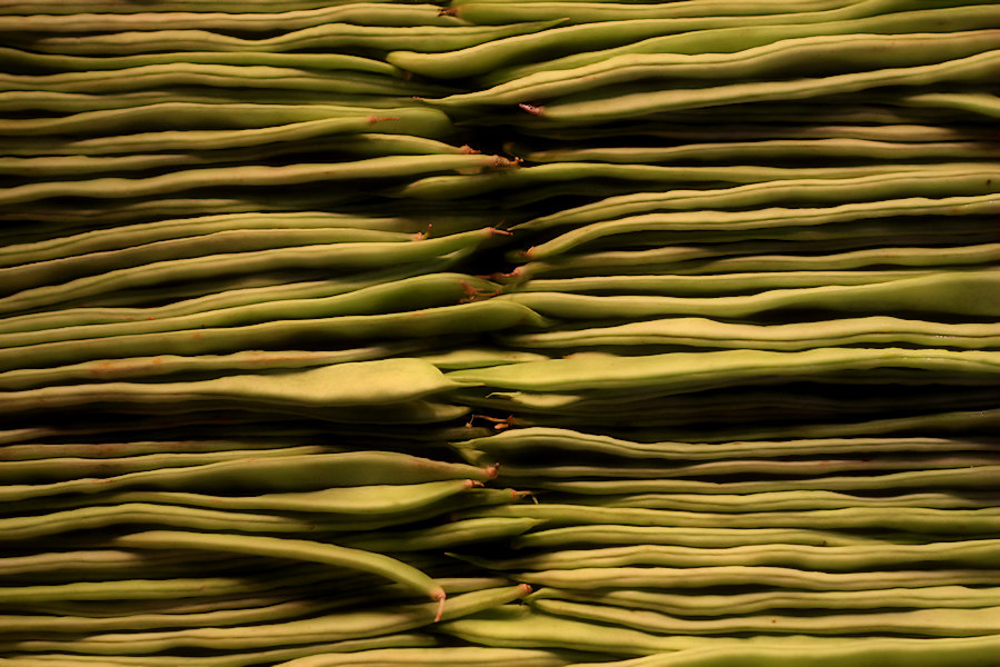 green beans / mongeta verda