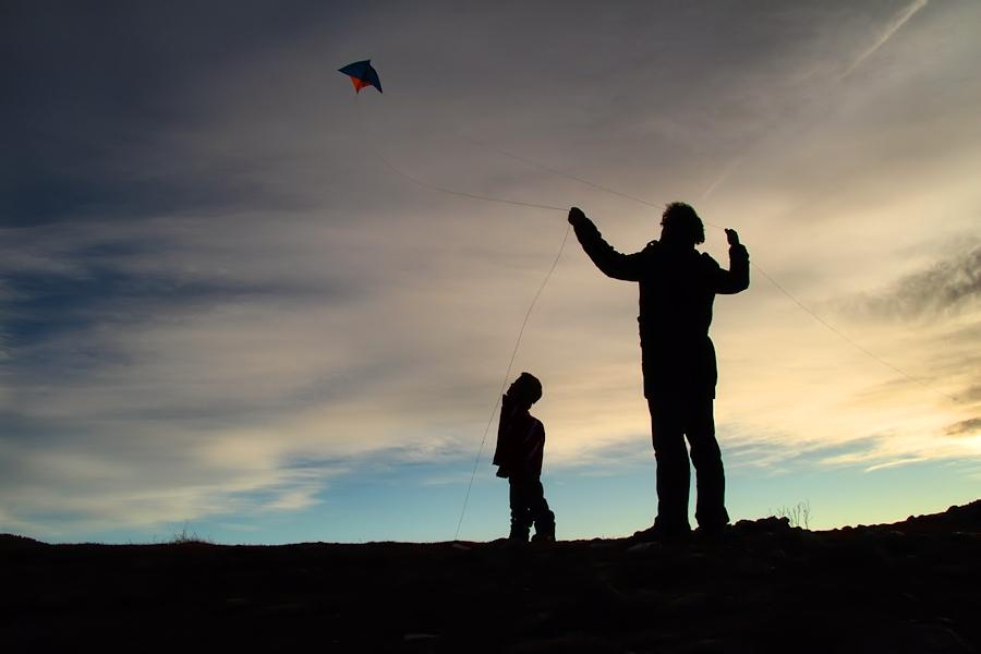 the kite / l'estel