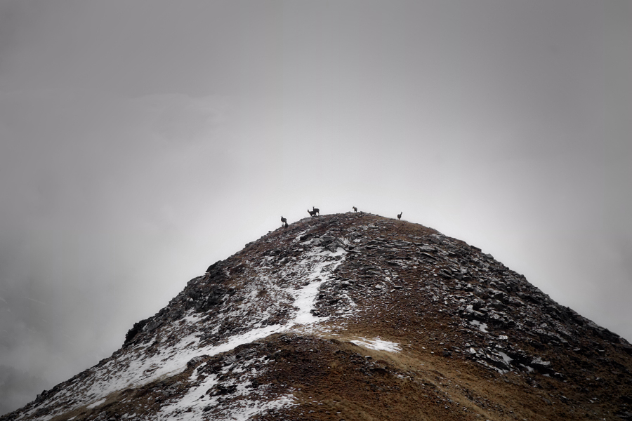 mireu allà dalt la muntanya que hi ha
