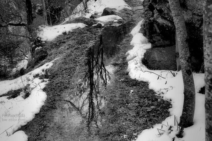 the path after rain / el camí després de la pluja