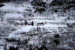 the winter / l'hivern