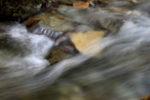 river stones / les pedres del riu