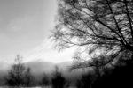 Un paisatge d'hivern