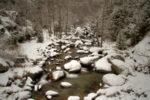when it's winter on the river / de quan és hivern al riu