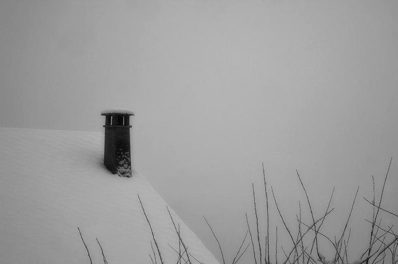 under the snow / sota la neu