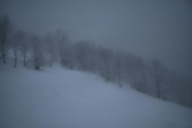 a winter / un hivern / un invierno