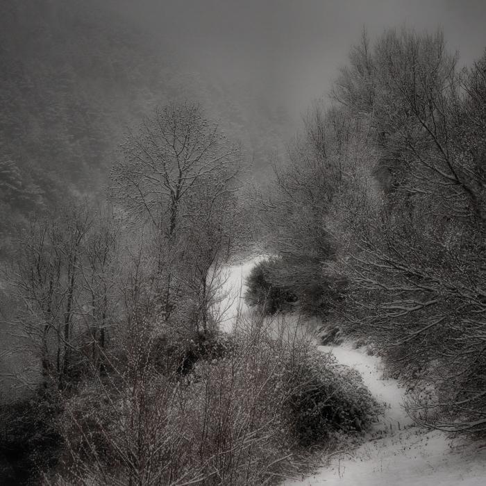 Altres camins