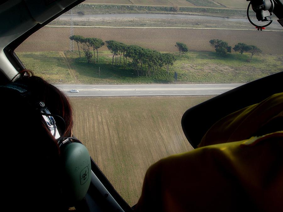 Paisatge de bosquet i cotxe des d'un cotxe volador