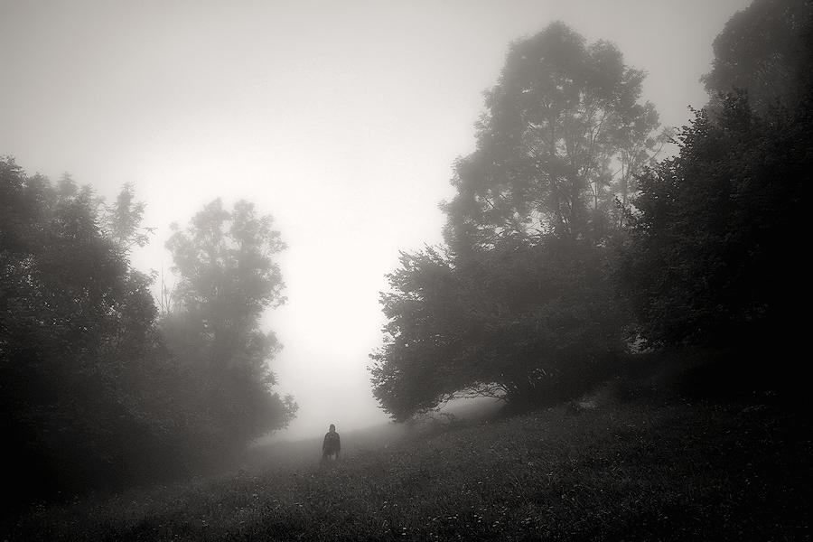 on fog / emboirada