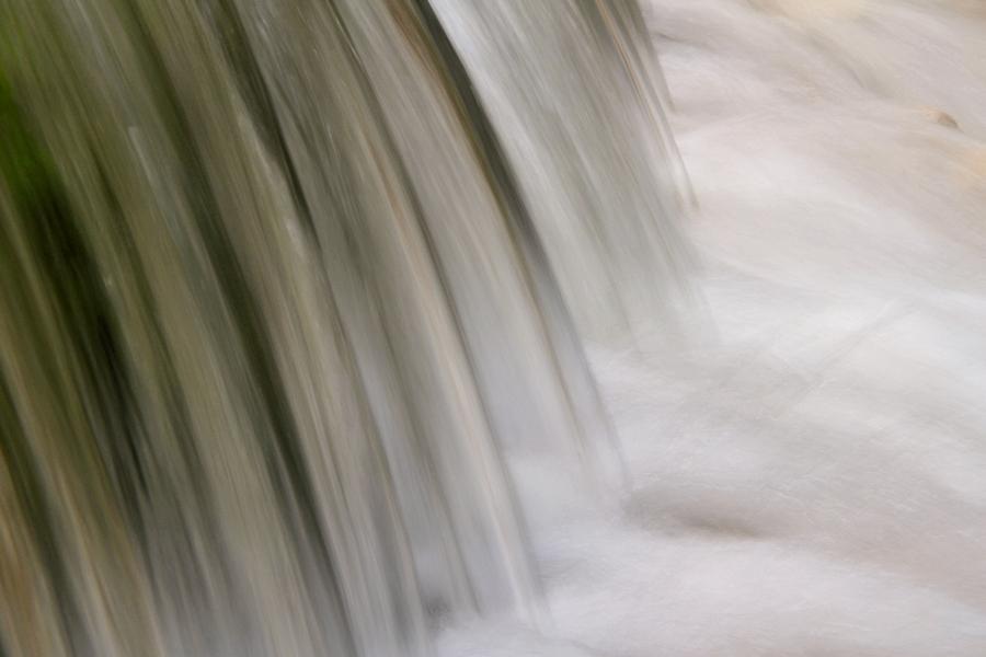the water / l'aigua