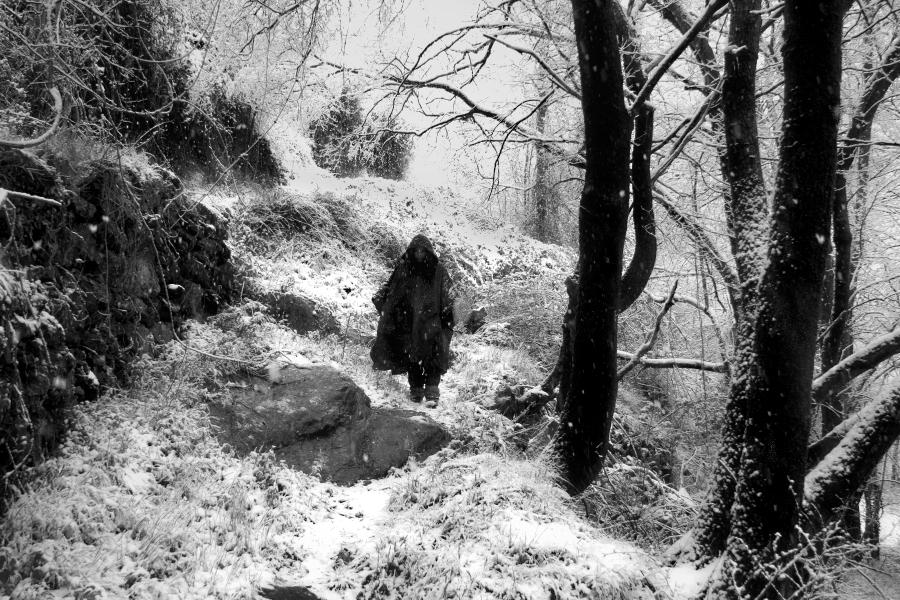 those snowfalls in the spring / d'aquelles nevades a la primavera
