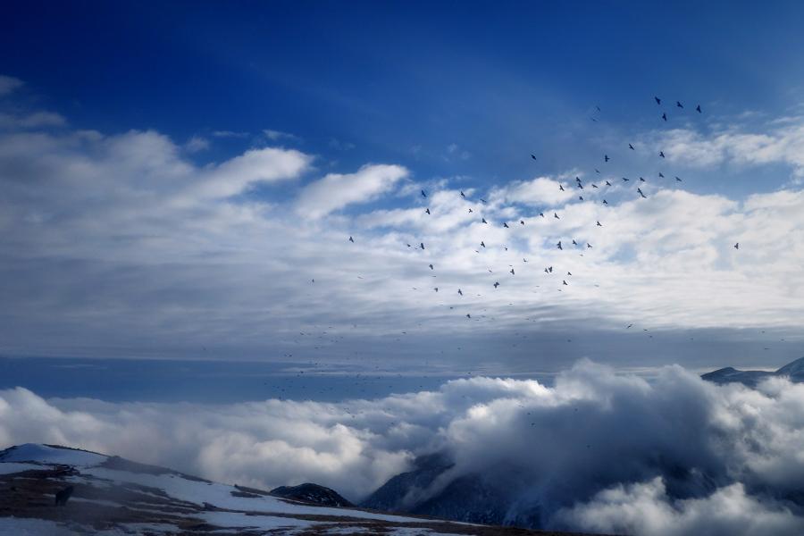mireu allà dalt del cel que hi ha, hi ha el cel