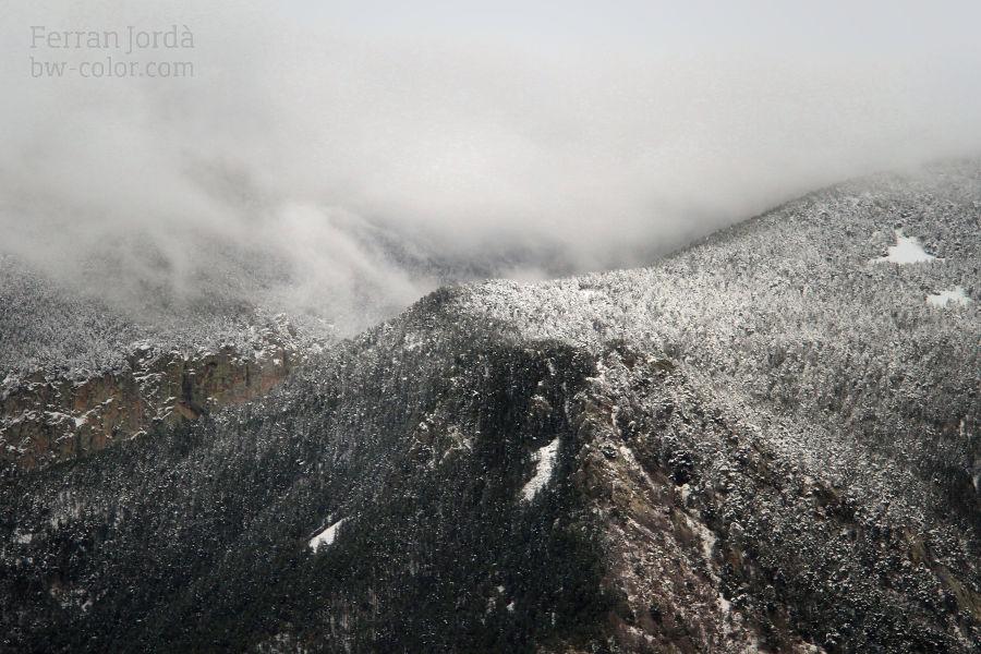 after snowfall / després de la nevada