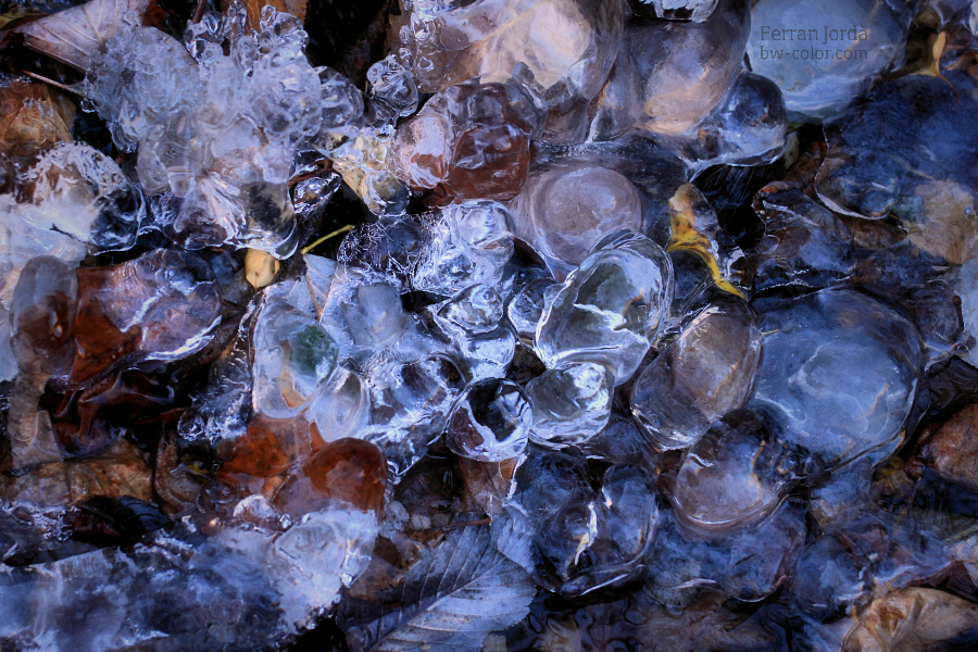 pearls of the frozen ground / les perles del terra glaçat