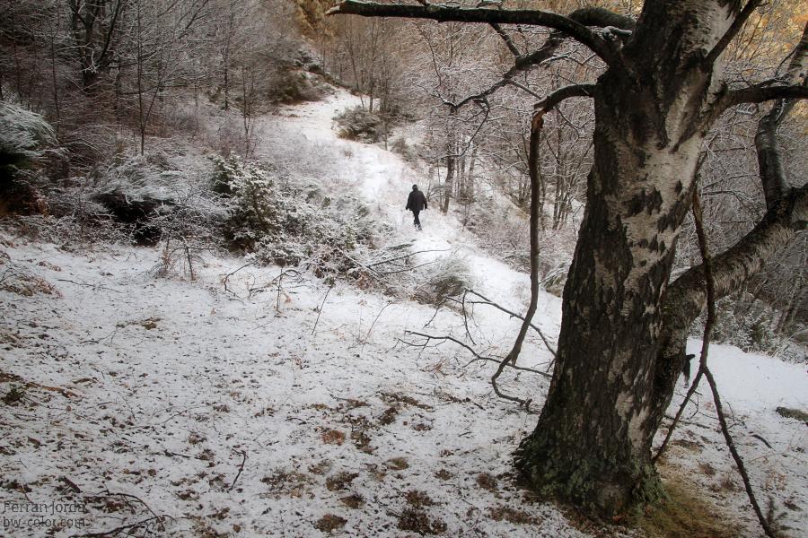 Aquest hivern que ja terminem