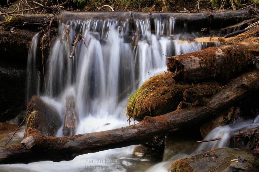 water power / la força de l'aigua