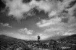 observing the landscape /observant el paisatge