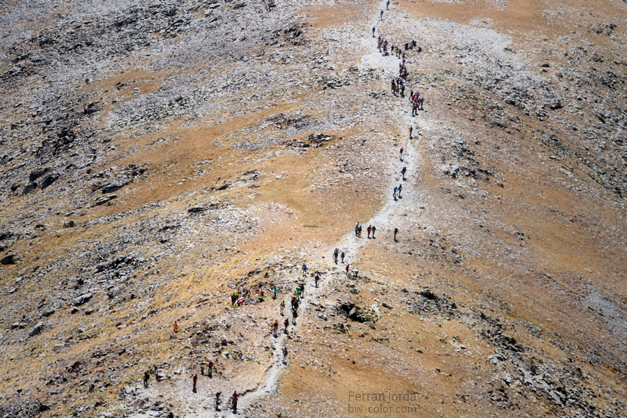 .the hikers.