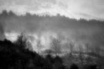 blizzard days / dies de torb