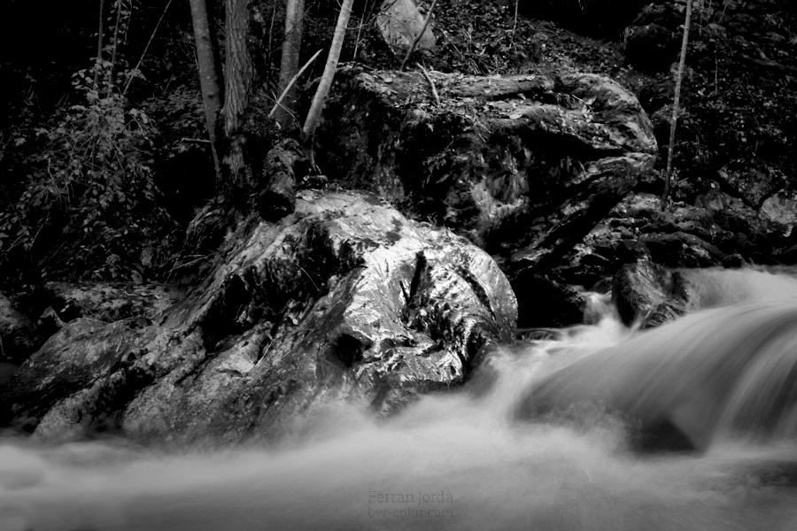Les roques del riu