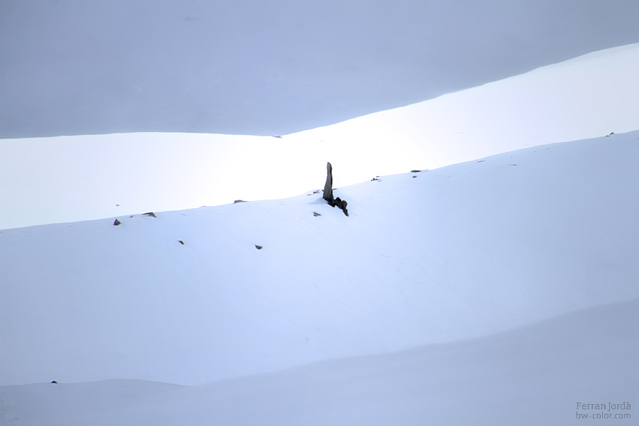 snow and monolith / monòlit i neu