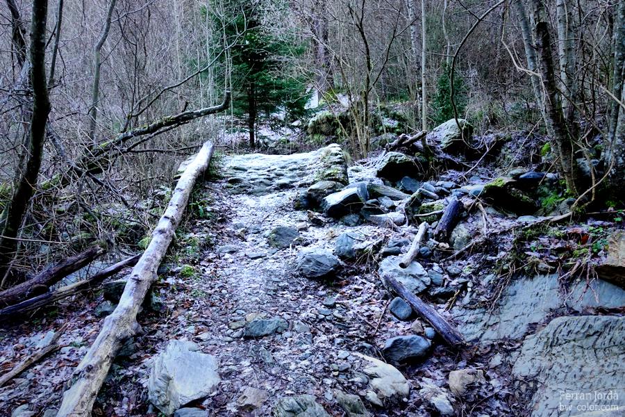 a small bridge / un petit pont