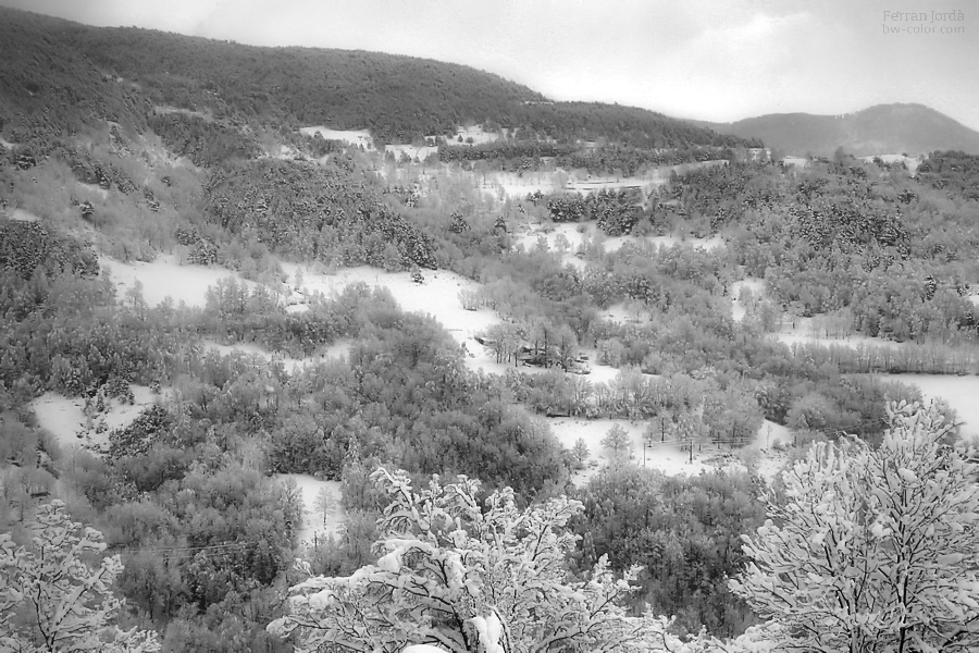 landscape just after the snowfall / paisatge després de la nevada