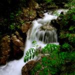 Petit salt d'aigua / Little waterfall