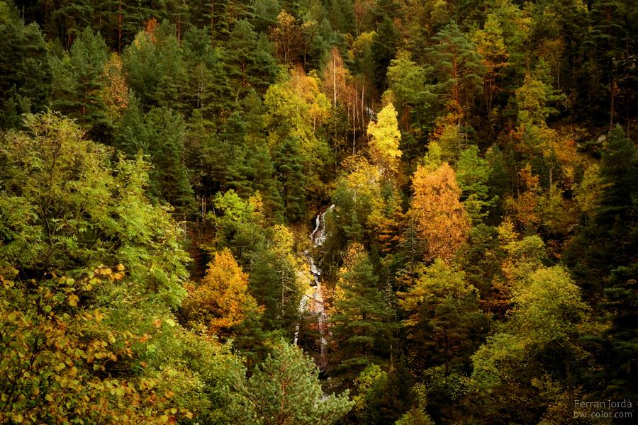 waterfall in autumn / salt d'aigua a la tardor