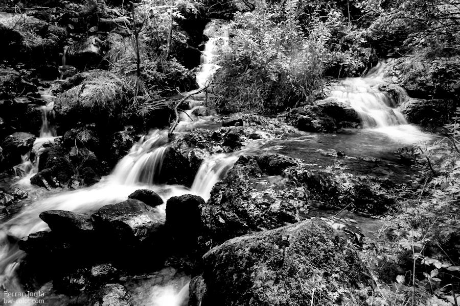 water everywhere / l'aigua