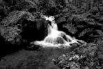 the river that flows / el riu que flueix