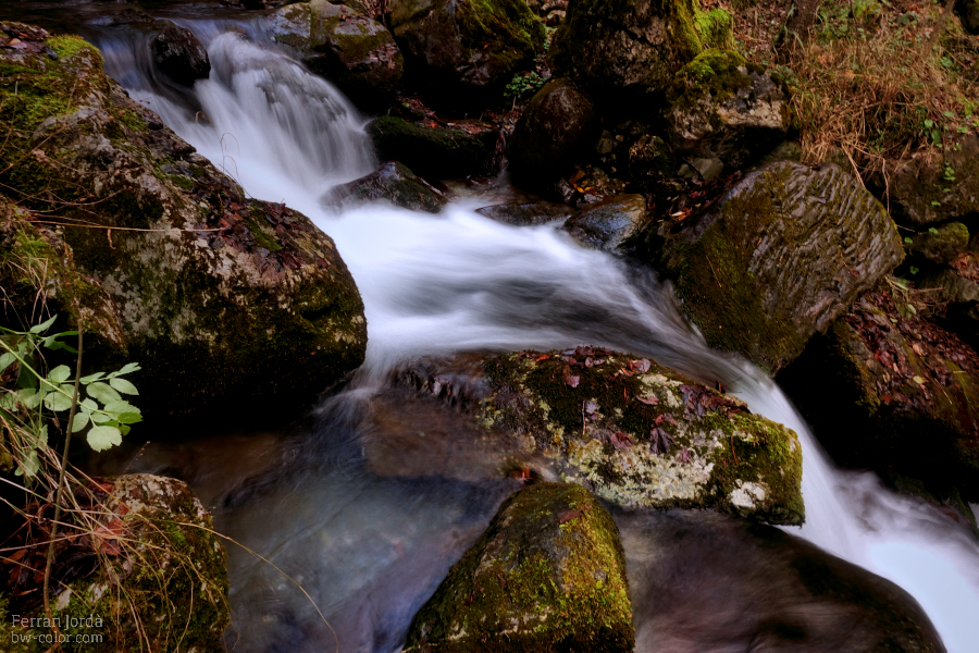 autumn rock in the river / roca de tardor enmig del riu