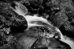 autumn rock in the river / roca de tardor enmig del riu