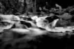 a walk among the river in winter / un passeig pel riu a l'hivern