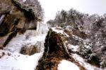 winter landscapes / paisatges de l'hivern